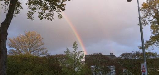RegenboogRavelijnHoogravenTamirof