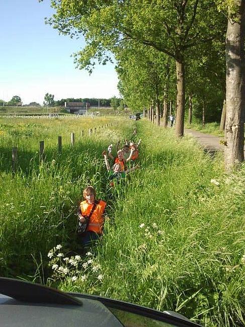 Avondvierdaagse Hoograven 2013 Korte route