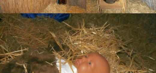 NR Kerststal 2013 pano 3