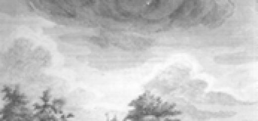 De Liesbosch in 1740 prent-kopergravure